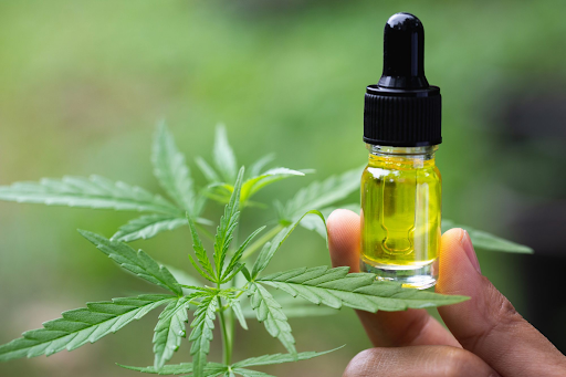 Cannabidiol – Everything You Should Know Before Purchasing